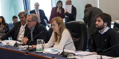 despacho regulación nominial hcdn