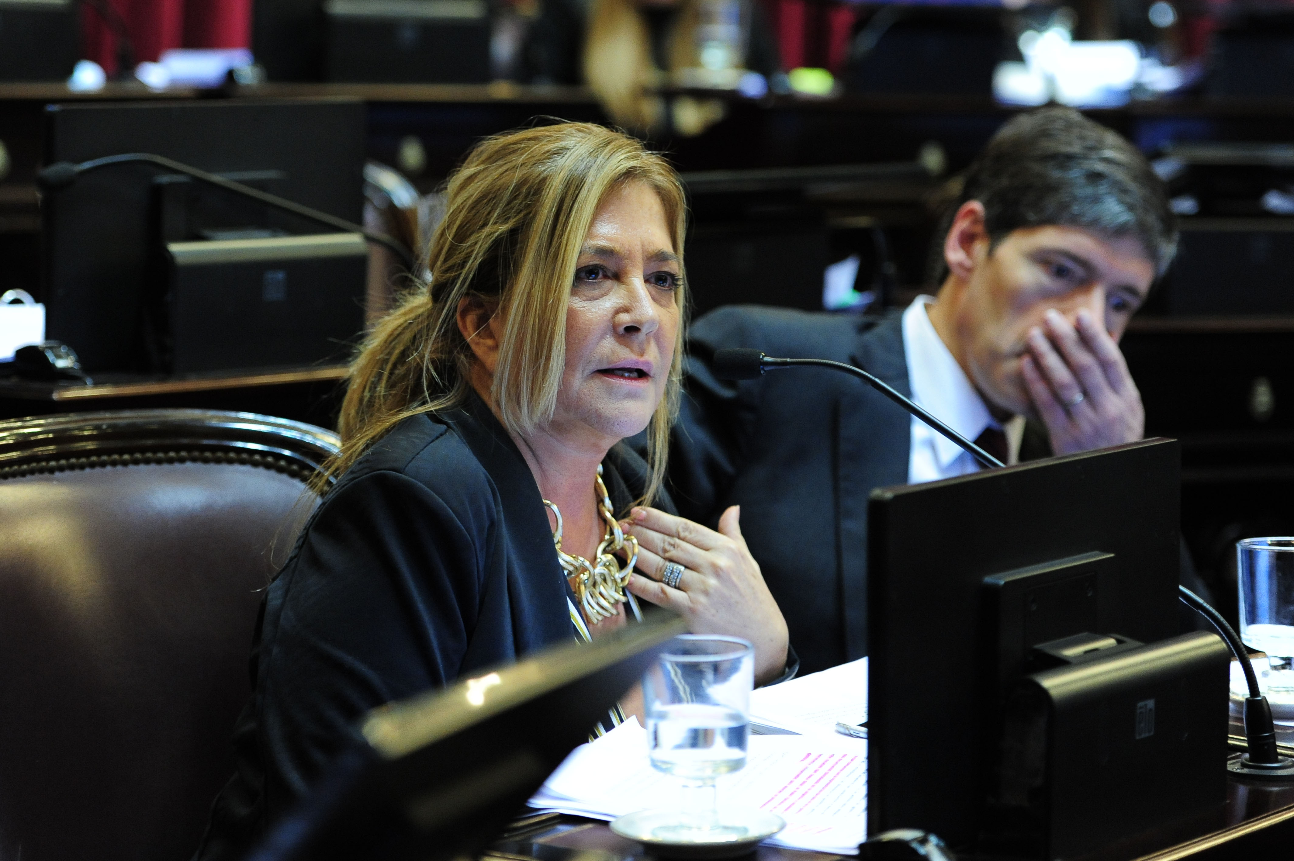 La c mara de senadores repudi las declaraciones de for La camara de senadores