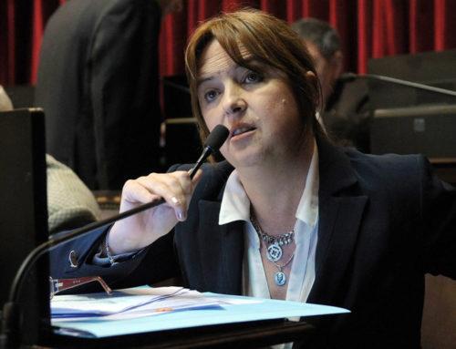 La senadora Odarda comparó el olvido del ARA San Juan con la desmalvinización