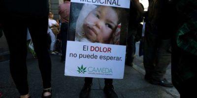 cannabis medic