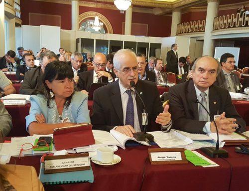 El Parlasur sigue con preocupación la negociación Mercosur – UE