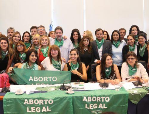 Aborto si, Aborto no: Resumen de todos los proyectos presentados en el Congreso