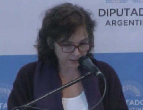 Alejandra Darín: «El debate es la necesidad de legislar para que dejen de morir mujeres»