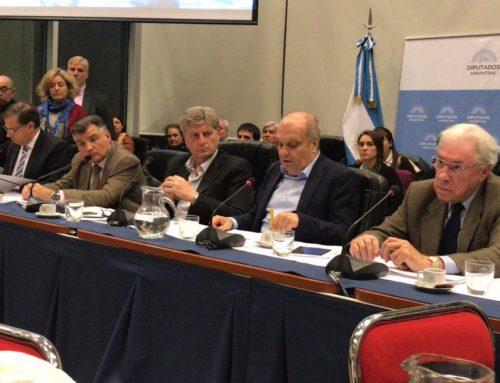 """Lombardi en Diputados: """"Los despidos en Telam son la consecuencia lamentable de un problema estructural"""""""