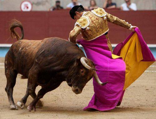 """""""En defensa de la tauromaquia"""", por Eliana Morales"""