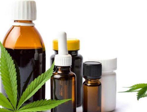 Mendoza: Proponen crear una sociedad del estado para producir aceite de cannabis