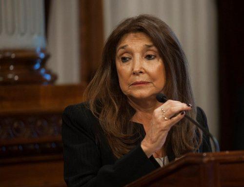 El Senado planea avanzar con la designación del Defensor del Niño y la Ley de Góndolas
