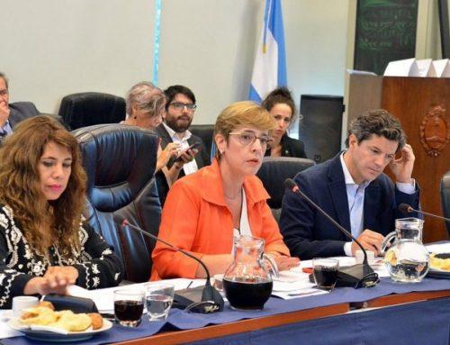 Se reanuda del debate del nuevo Régimen Penal Juvenil con foco en la edad de imputabilidad