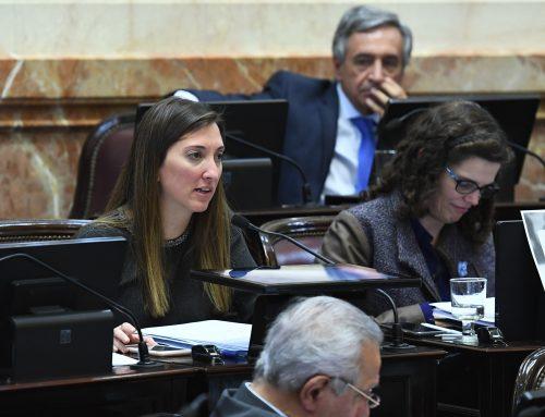 La senadora Catalfamo exhortó al Gobierno y al Congreso a visibilizar las temáticas de género