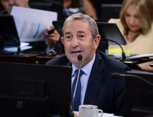Senador Cobos afirmó que en la UCR quieren que la candidata sea Vidal