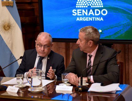 En el Senado, Faurie defendió política oficial sobre Malvinas