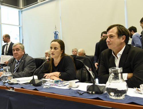 La oposición se alzó con el dictamen de mayoría en el plenario de Ley de Góndolas