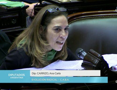 Diputada Carrizo apoyó el nombramiento de Graham como defensora de los derechos del niño: «una cosa es la opinión, otra la legalidad»
