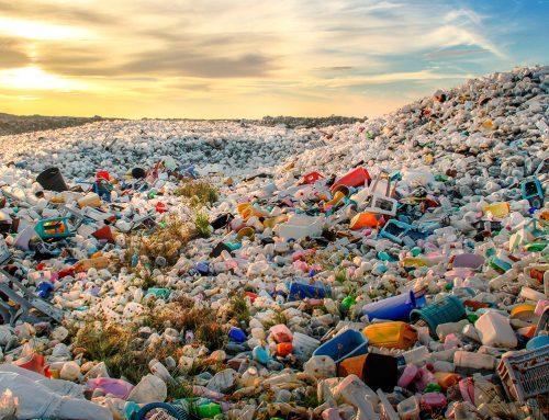 Presentan proyecto de ley para prohibir plásticos de un solo uso