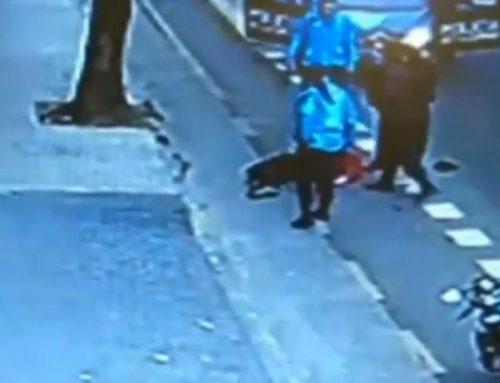 Legisladores piden informes por el policía que mató a un hombre de una patada