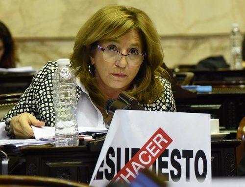 Silvina Frana: «El gobierno más que estimaciones, proyecta ilusiones en el Presupuesto 2020»
