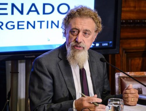 Luenzo: «En Bolivia hubo un golpe de Estado brutal»