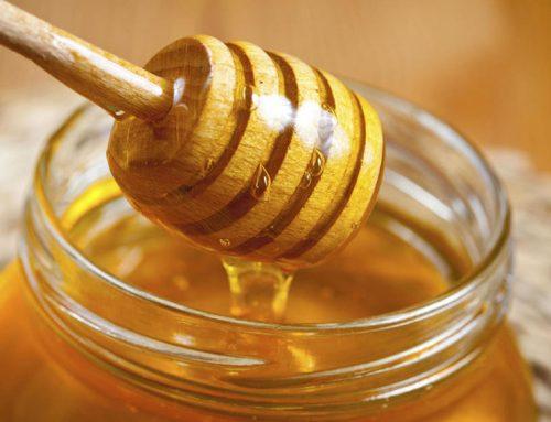 Proponen que la miel se sume a los endulzantes en escuelas, dependencias públicas y restaurantes