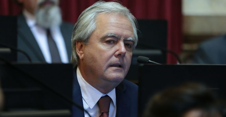 Pinedo admitió que el oficialismo 'trabajó' para que no se apruebe la Ley del aborto