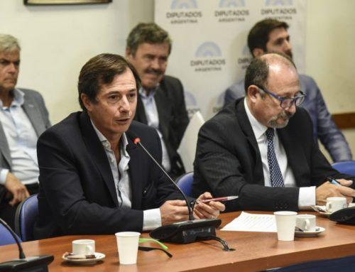 Lipoveztky: «Se debería consensuar una declaración única sobre Bolivia»