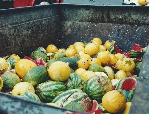 Entre Ríos: Para evitar desechar alimentos, proponen un plan provincial de recuperación y donación