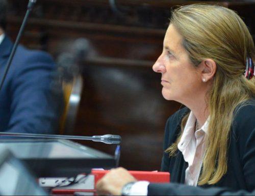 Diputada Najul: «Será todo un desafío el nuevo rol opositor de la UCR»
