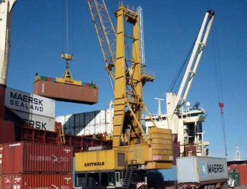 ROSARIO – Piden revisiones médicas en los puertos de la provincia para prevenir el coronavirus