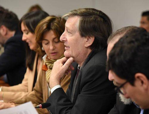 Torello afirma que el proyecto de la Deuda 'no es necesario' porque la Ley de Emergencia económica 'les dio todas las facultades'