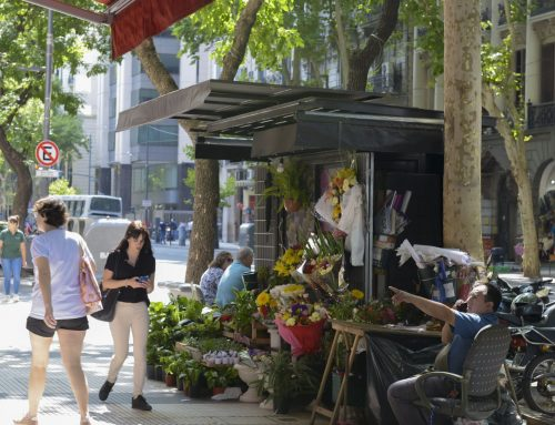 Nueva ley regula la actividad de los floristas