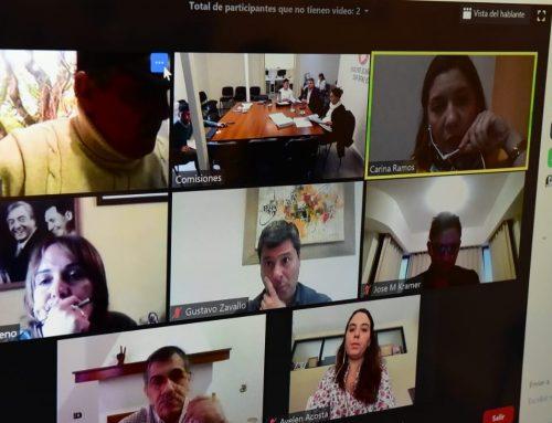 ENTRE RIOS – Se reunió comisión para la prevención del maltrato infantil en el marco de la emergencia sanitaria