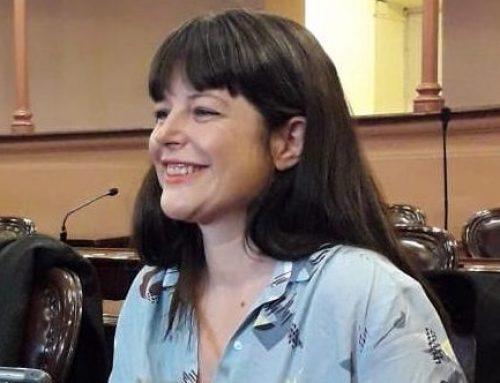 La diputada Gaillard aseguró que los temas de género llegaron «para quedarse» en el Congreso Nacional