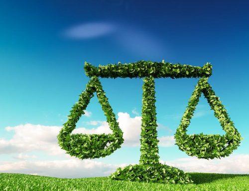 BS.AS. – Proponen una ley de formación ambiental en la política pública