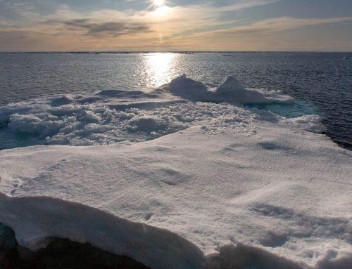 La temperatura global puede tardar décadas en descender con reducción de emisiones, según estudio