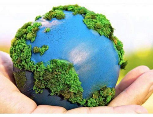 2020: el año en el que la agenda medio ambiental quedó suspendida