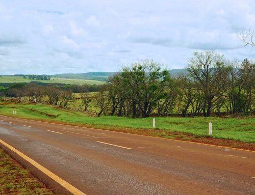 MISIONES – Proponen Ley de Impuesto al Latifundio para propiedades con más de 1200 hectáreas