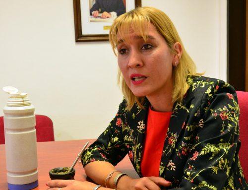 Diputada Matzen pide declarar la Emergencia Cultural en todo el territorio nacional