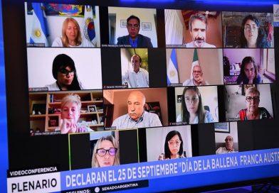 Dictamen a proyecto de ley que declara al 25 de septiembre como el Día Nacional de la Ballena Franca