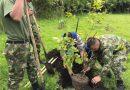 Diputados avanzó en Proyecto que busca proteger el medio ambiente en predios que usan las Fuerzas Armadas