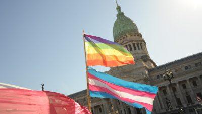 Pioneras de la inclusión política: las candidatas trans que aspiran llegar al Congreso de la Nación