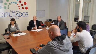 ENTRE RÍOS – Se trató en comisión un proyecto de ley de sentencias de fácil lectura